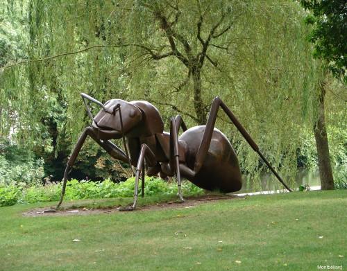 Parc du Pré la rose - Montbéliard
