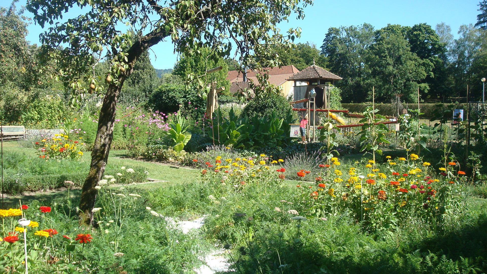 Parc de wesserling alsace a la conqu te de l 39 est for Jardin wesserling