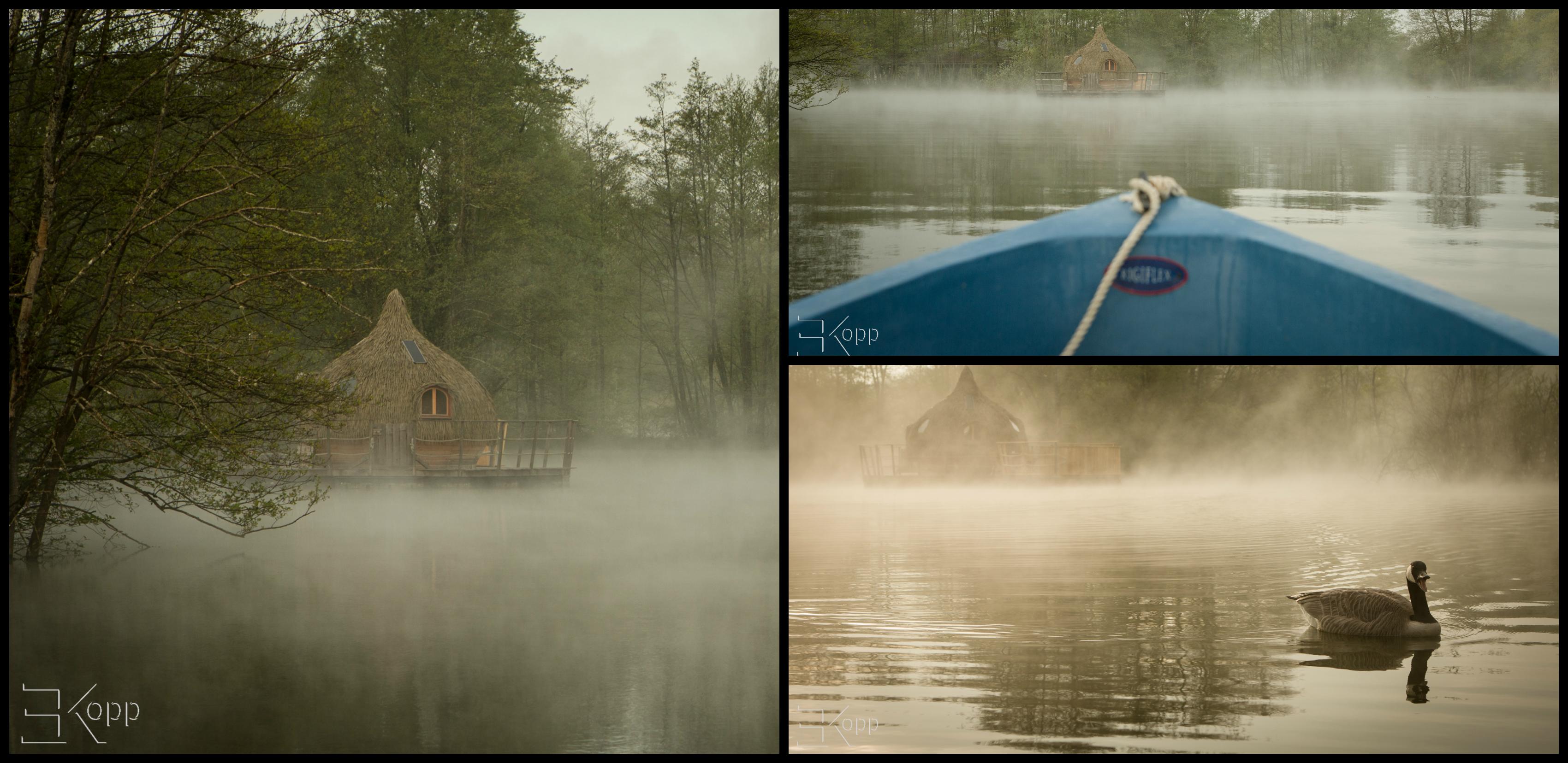 La brume au petit matin, c'est magique !