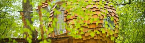 Les cabanes des Grands Reflets - Joncherey - Franche-Comté
