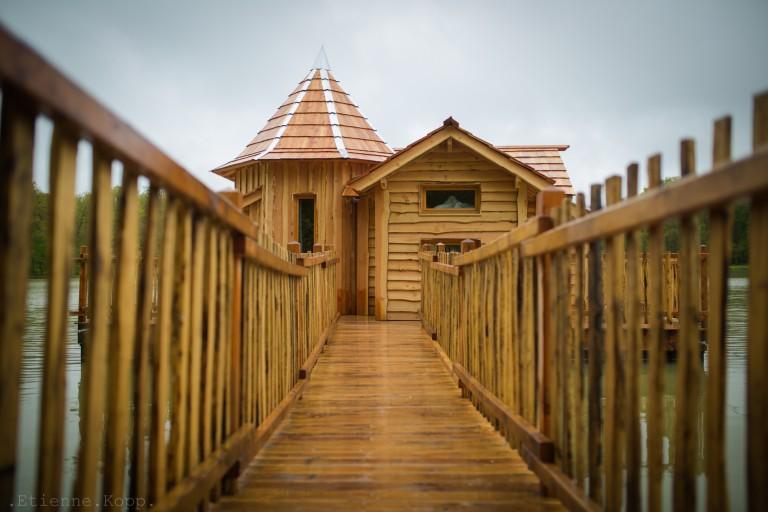 Bienvenue dans la cabane Oasis !