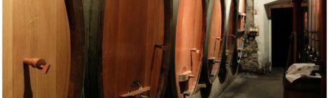 Dégustation de vins autour des 5 sens - Katzenthal