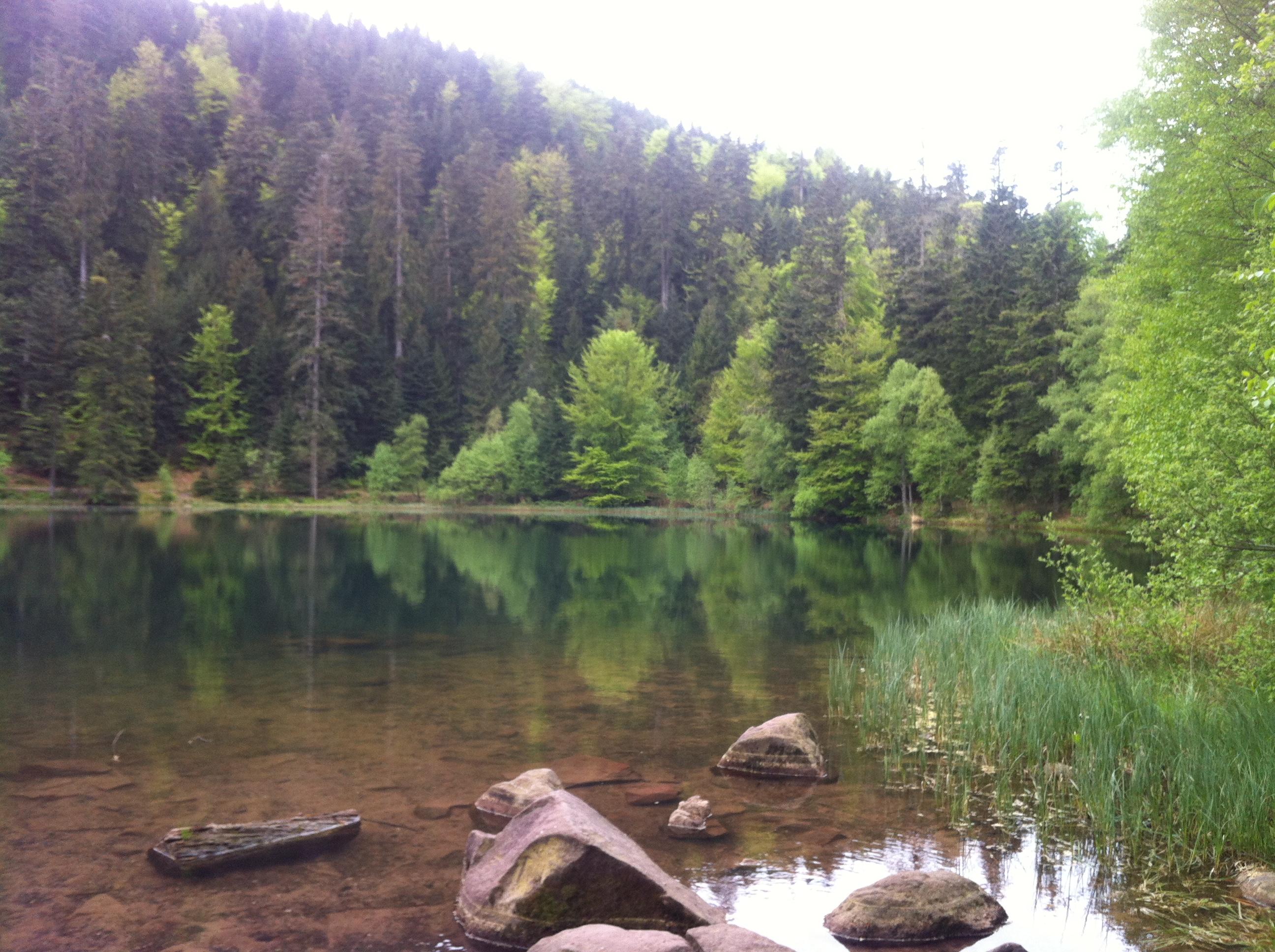 Le lac de la Maix - Vosges