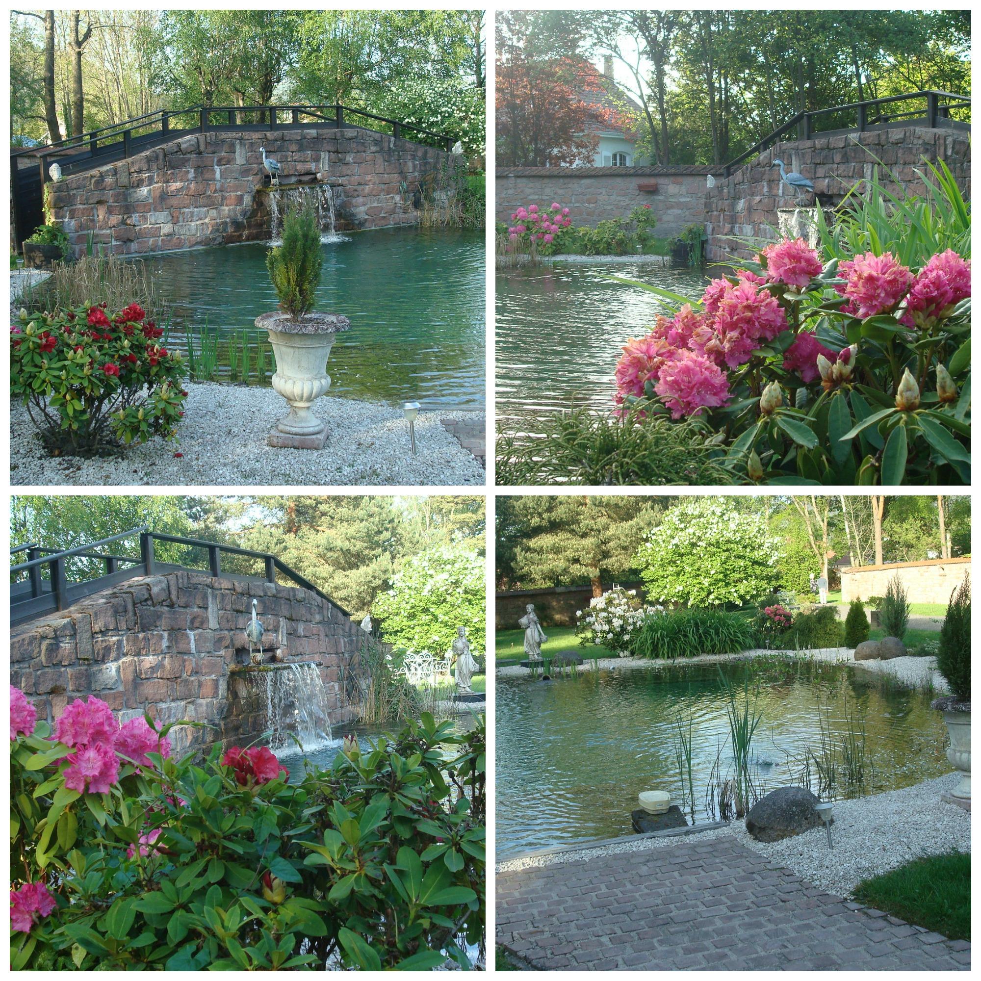 Maison d'Hôtes Les Jardins d'Aika - Raon l'Etape