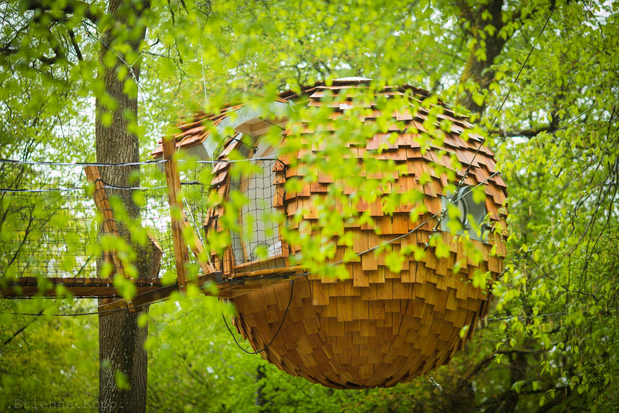 Cabane Des Grands Reflets les cabanes des grands reflets - joncherey - franche-comté