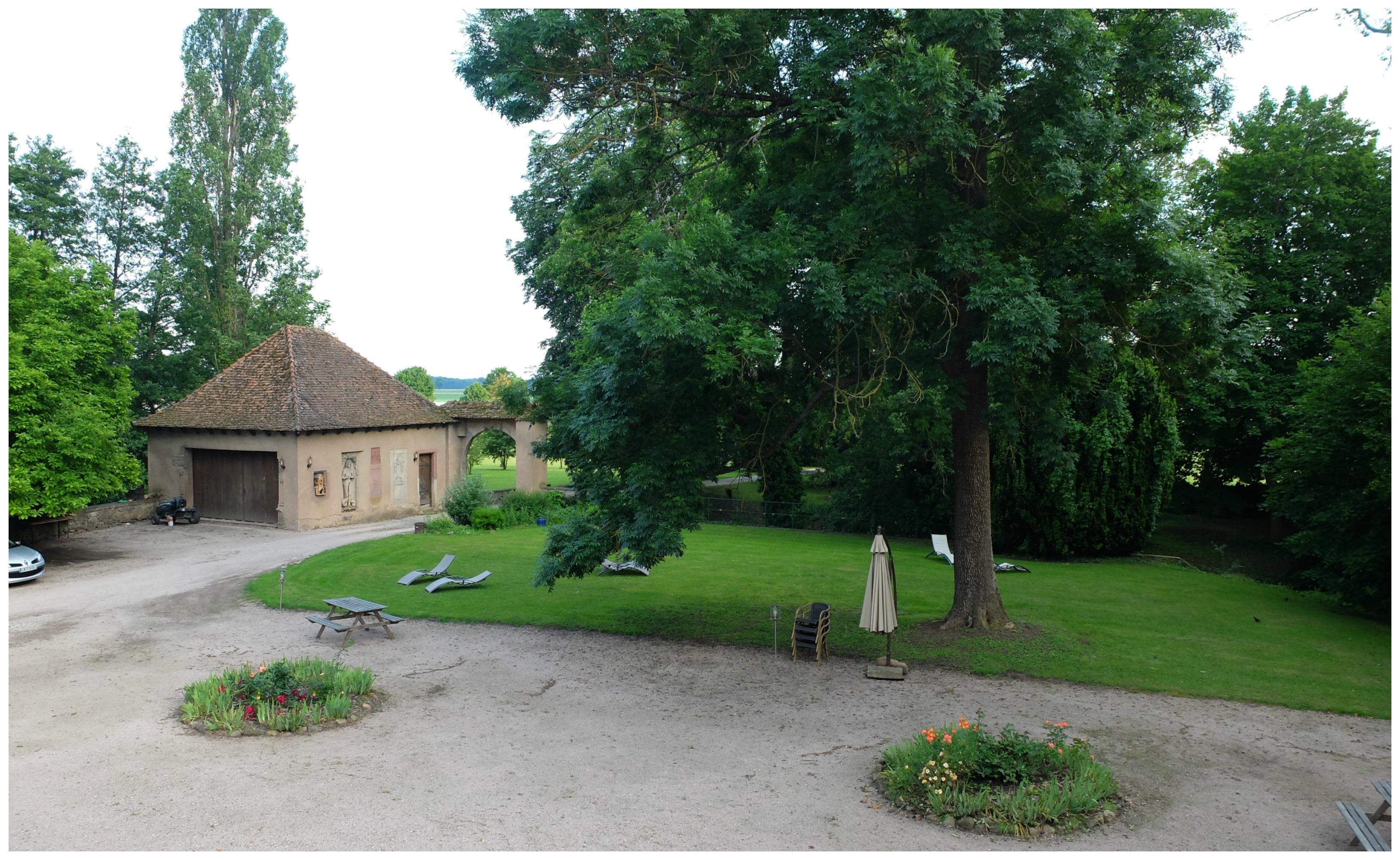 Château de Grunstein - Alsace