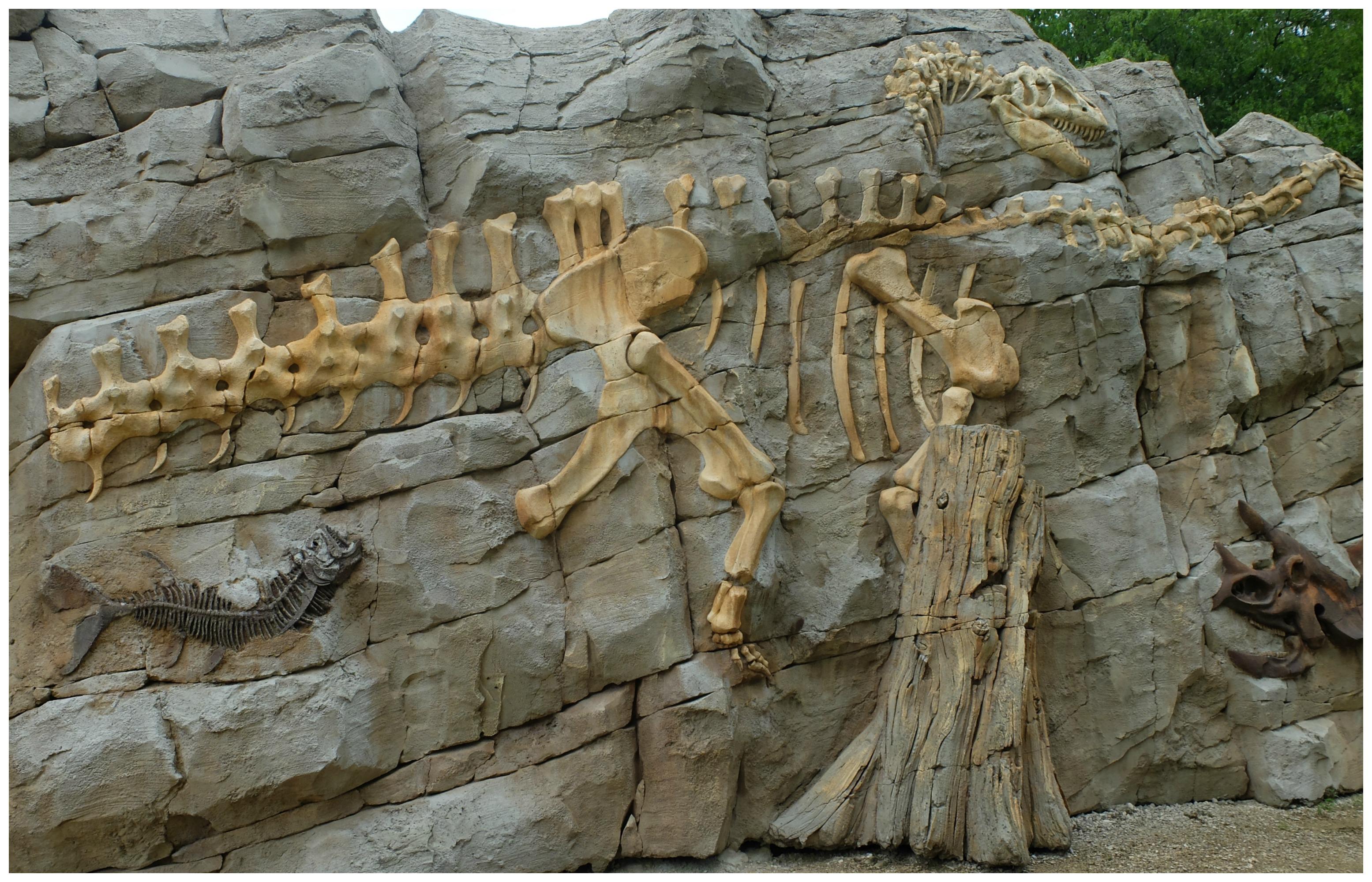Dino-Zoo - Doubs